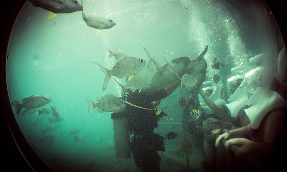 Sea Trek Grand Velas Riviera Maya - Mexico