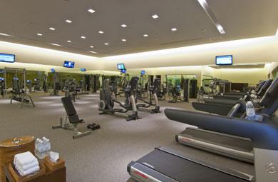 Programa de Life Fitness