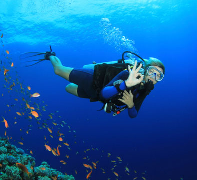 Scuba Diving Package at Grand Velas Riviera Maya