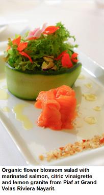 Grand Velas Riviera Maya serve gluten free and organic dishes